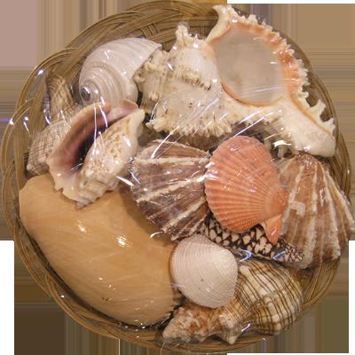 Καλάθι Φρούτα Θάλασσας 12''